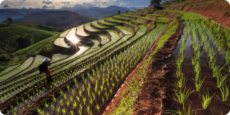 Industrial, Agriculture, Civil